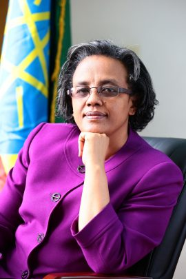 HER EXCELLENCY ROMAN TESFAYE ABNEH-First Lady of the Federal Democratic Republic of Ethiopia